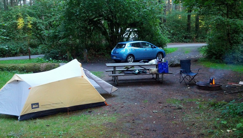 Campsite at Seaquest State Park