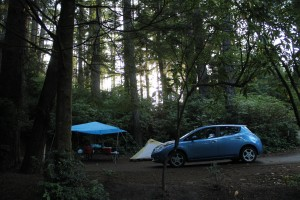 Honeyman Park Campsite
